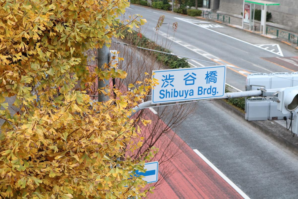 恵比寿の話と上京の話